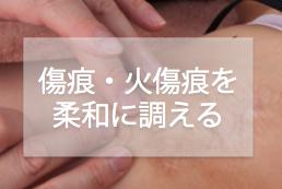 im-傷痕や火傷痕を深部から柔和に調える